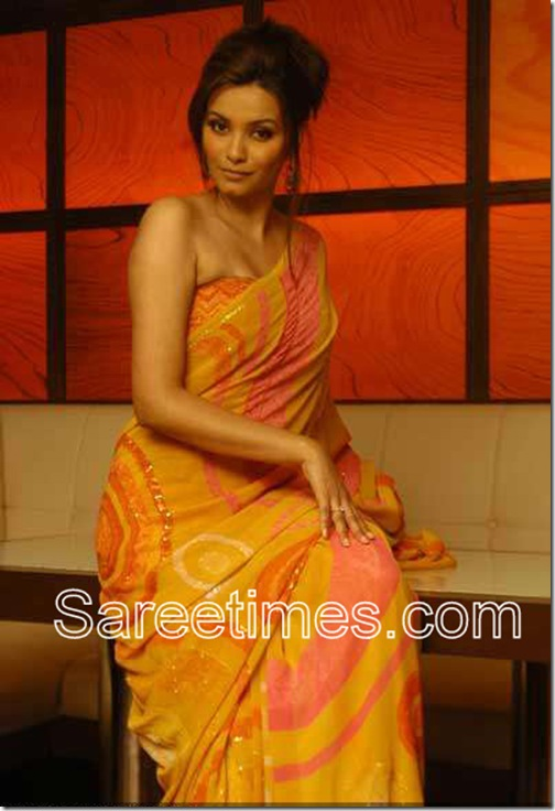 Diana-Hayden-Orange-Saree