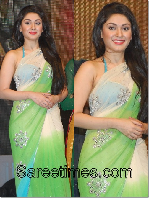 Manjari_Georgette_Saree