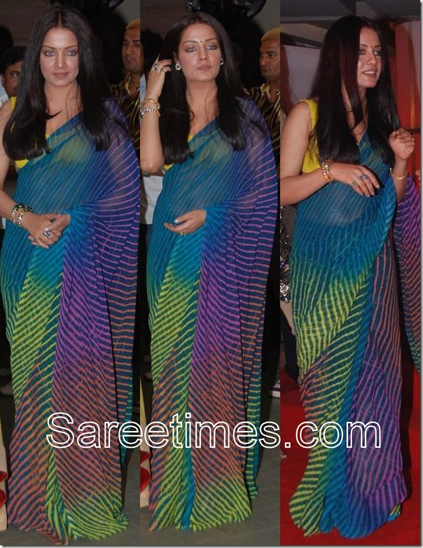 Celina_Jaitley_Designer_Saree