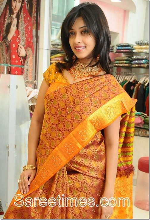 Payal_Gosh_Traditional_Saree