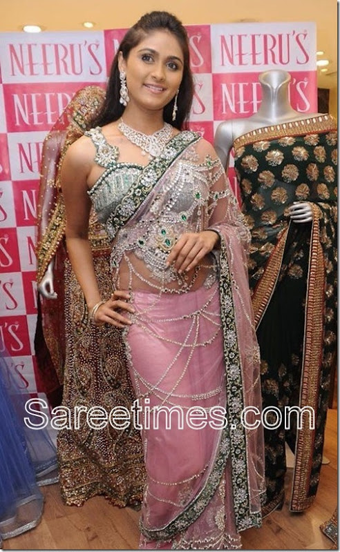 Biyanka_Desai_Embroidery_Saree