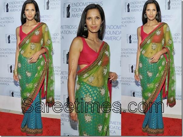 Padma_Lakshmi_Embroidery_Saree