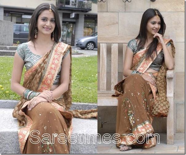 Kriti_Kharbanda_Brown_Saree