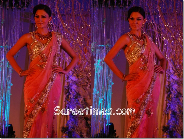 Falguni_Shane_Embroideryl_Saree