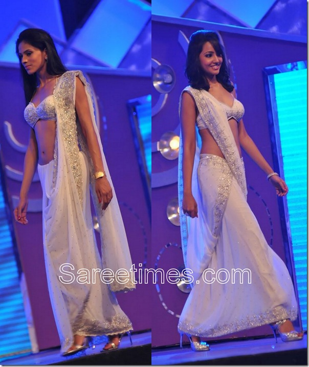 Embroidery_Saree_Drape