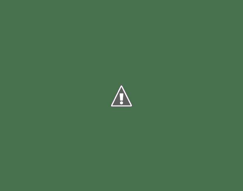 Yamaha Waverunner   Carburator Repair Kit
