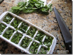 How to freeze fresh garden basil