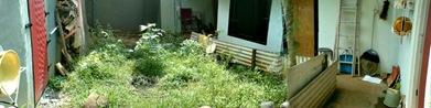 backyard in sukasirna jonggol