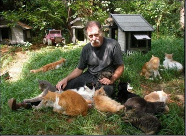 A Terra Prometida para Gatos (40)