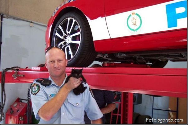 Uma pequena surpresa no carro da policia (2)