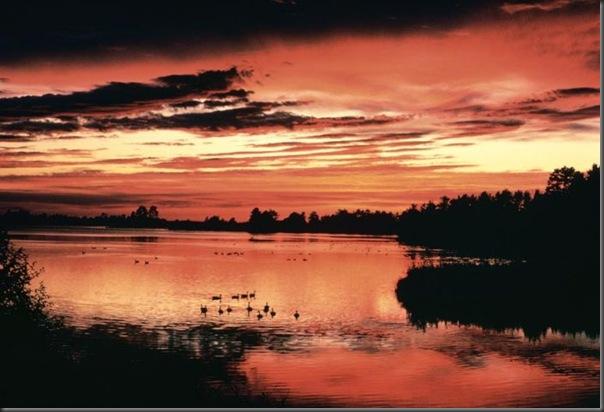 Lindas imagens do pôr do Sol (7)
