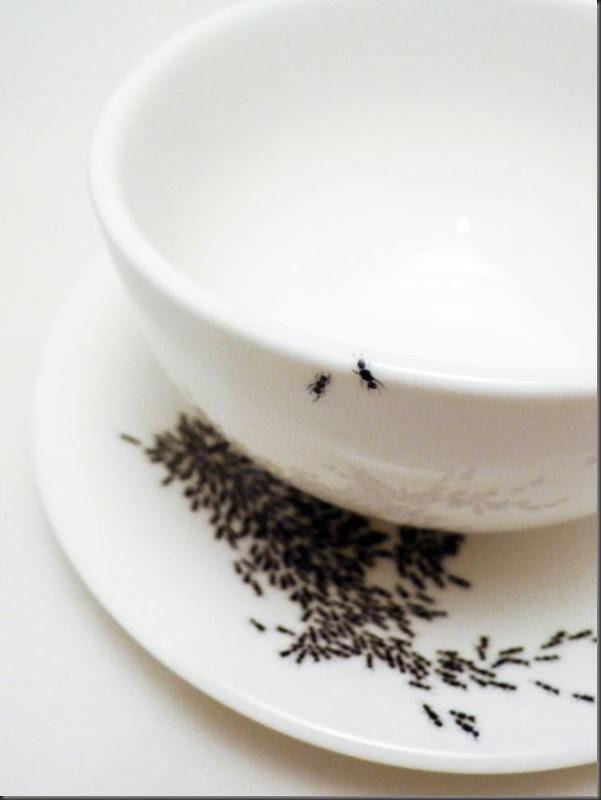 invasão de formigas (5)