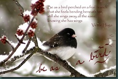 victor hugo bird quote_edited-2