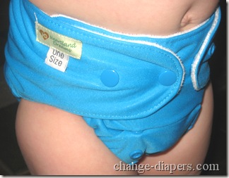 heartland dreams one size pocket diaper