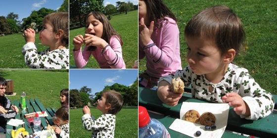 View picnic