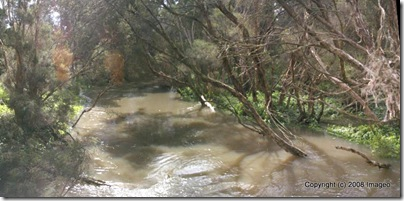 multi-image panorama of dandenong creek