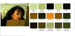 Colour choosen by Palette Generator