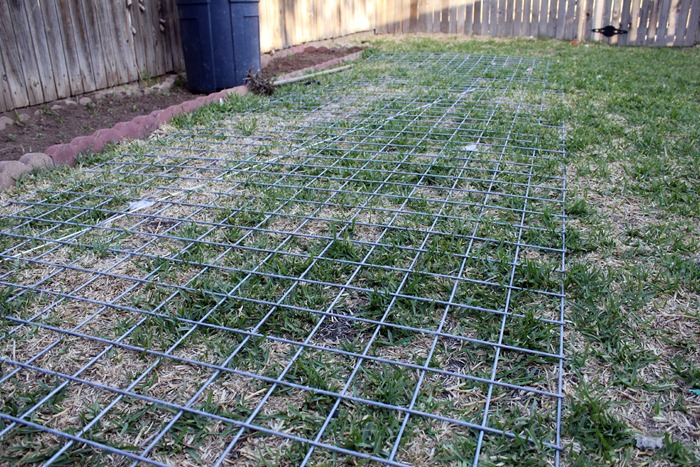 Wire Fencing 2