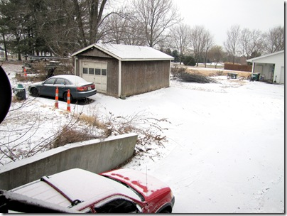 Snow12-19-10a