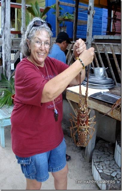 lobster 006