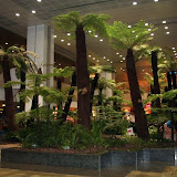 Jungle at Terminal 2 @ Changi Airport