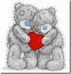osos amor