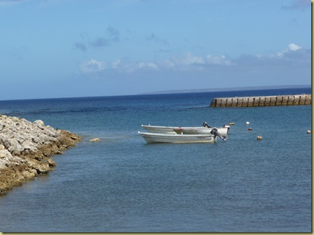 boats at Eua