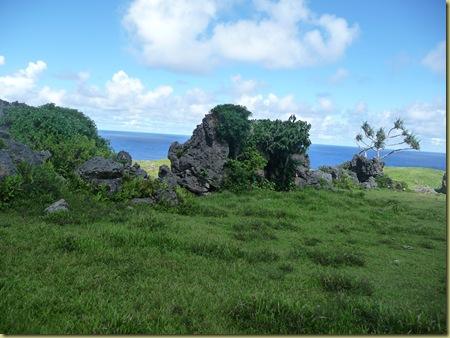 Eua's coral rock garden