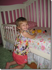 7.28.2010 Toddler Bed (5)