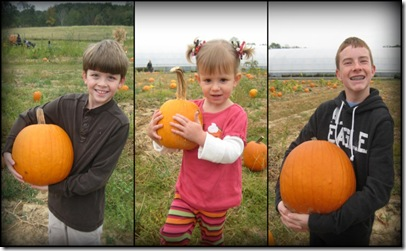 Pumpkin Patch Collage