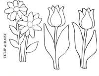 flores_78