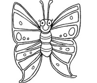 jyc mariposas (10)