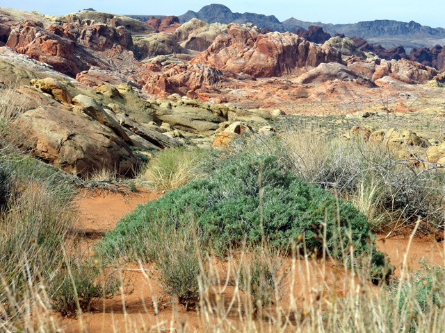 Valley of Fire State Park 018