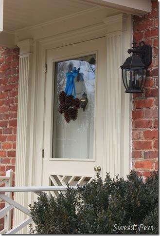 Pine Cones on Door
