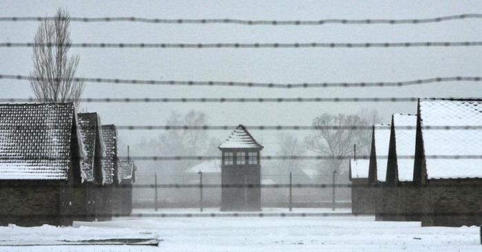 Auschwitz (33)