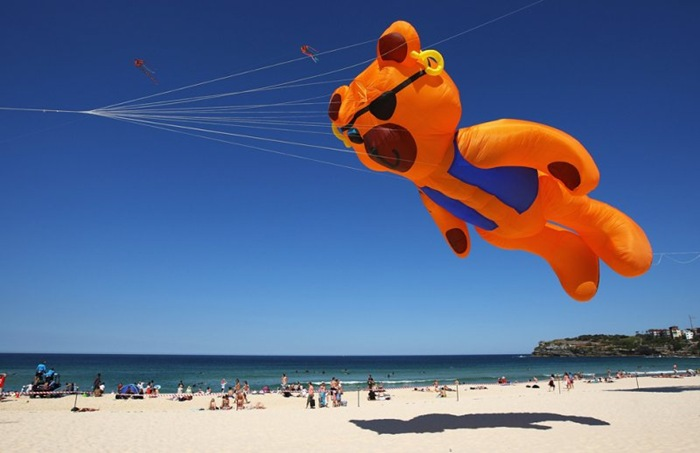 Festival of the Winds: Sydney Kite Festival