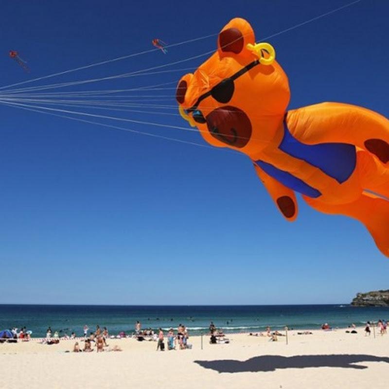 Festival of the Winds: Sydney Kite Festival