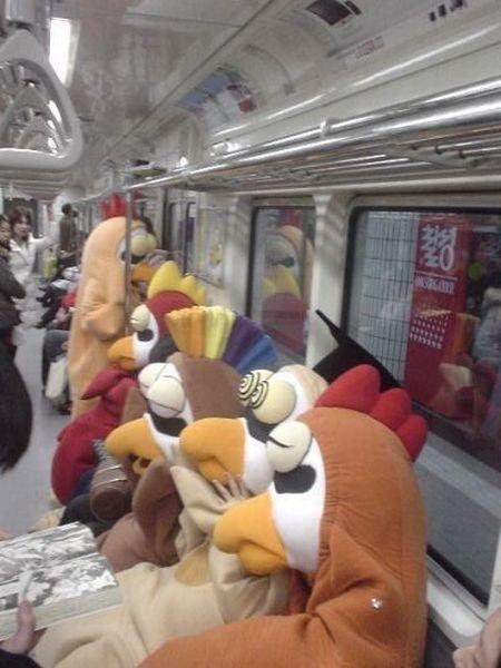 metro-life (34)