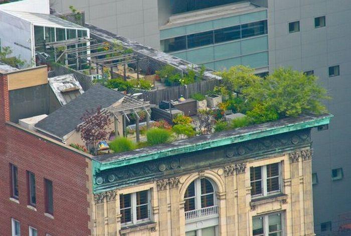 rooftops (13)