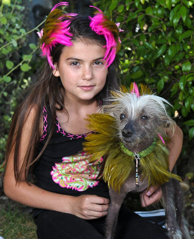 ugliest-dog (8)