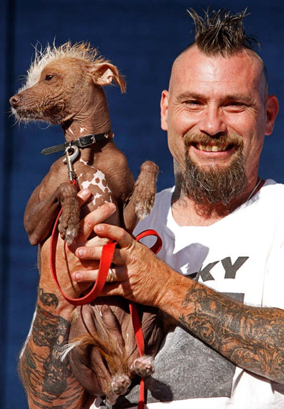 ugliest-dog (10)