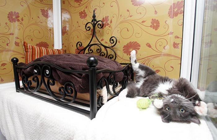 cat-hotel (1)