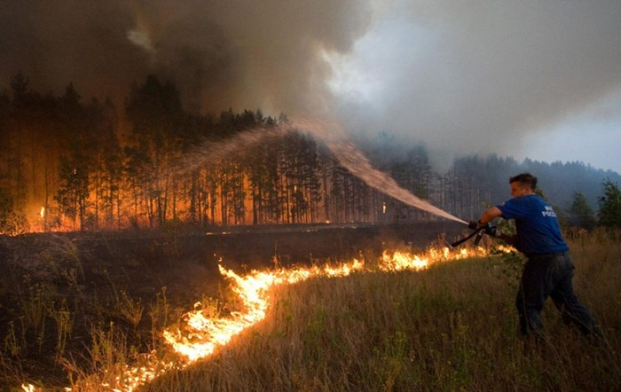 russia-forest-fire (3)