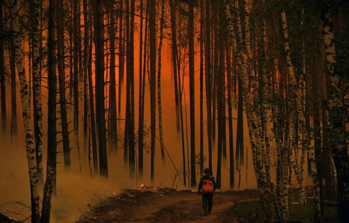 russia-forest-fire (20)