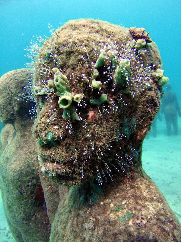 underwater-museum (8)
