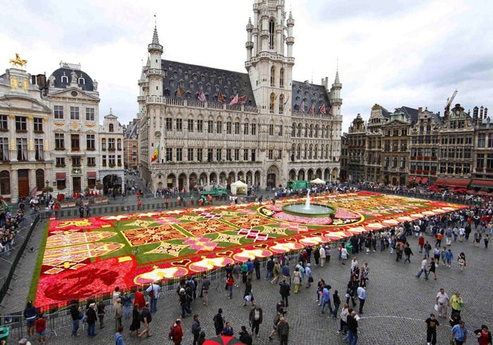 brussels-flower-carpet (4)