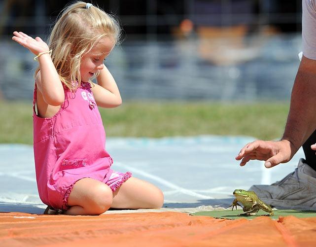 frog-jump-festival (1)