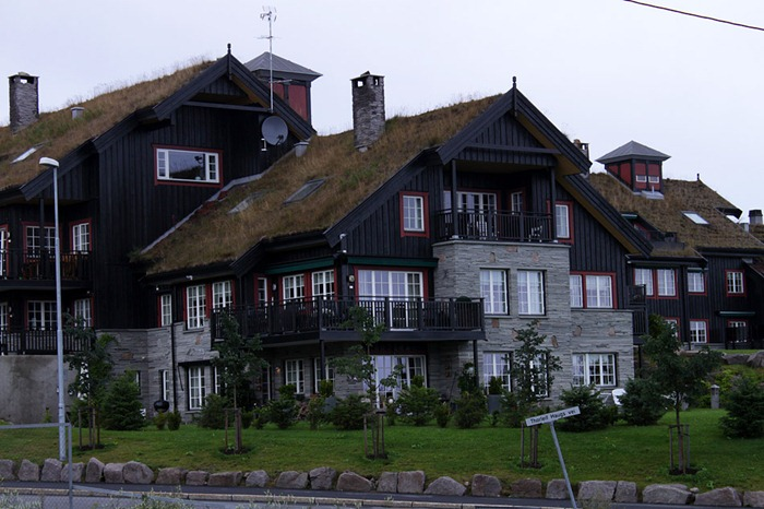 green-roof-norway (10)