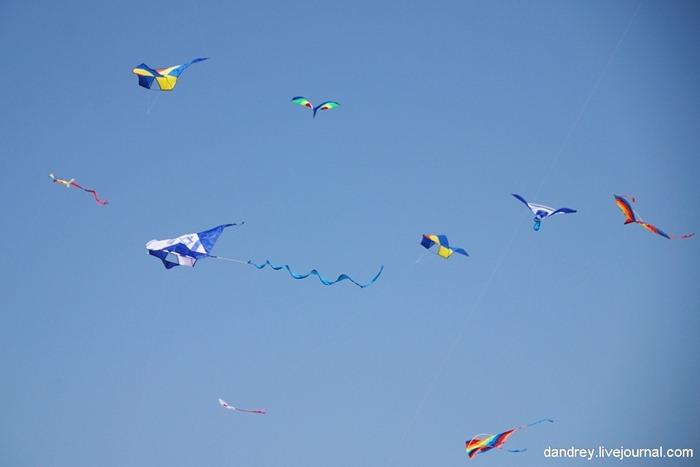 japanese-kite-festival (26)