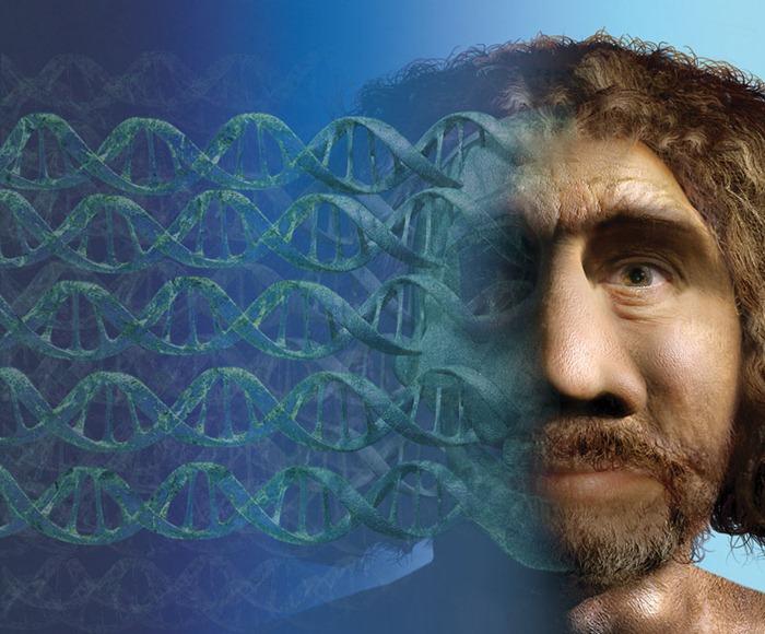 PODEVIN-Neanderthal fro Arhveology Magazine